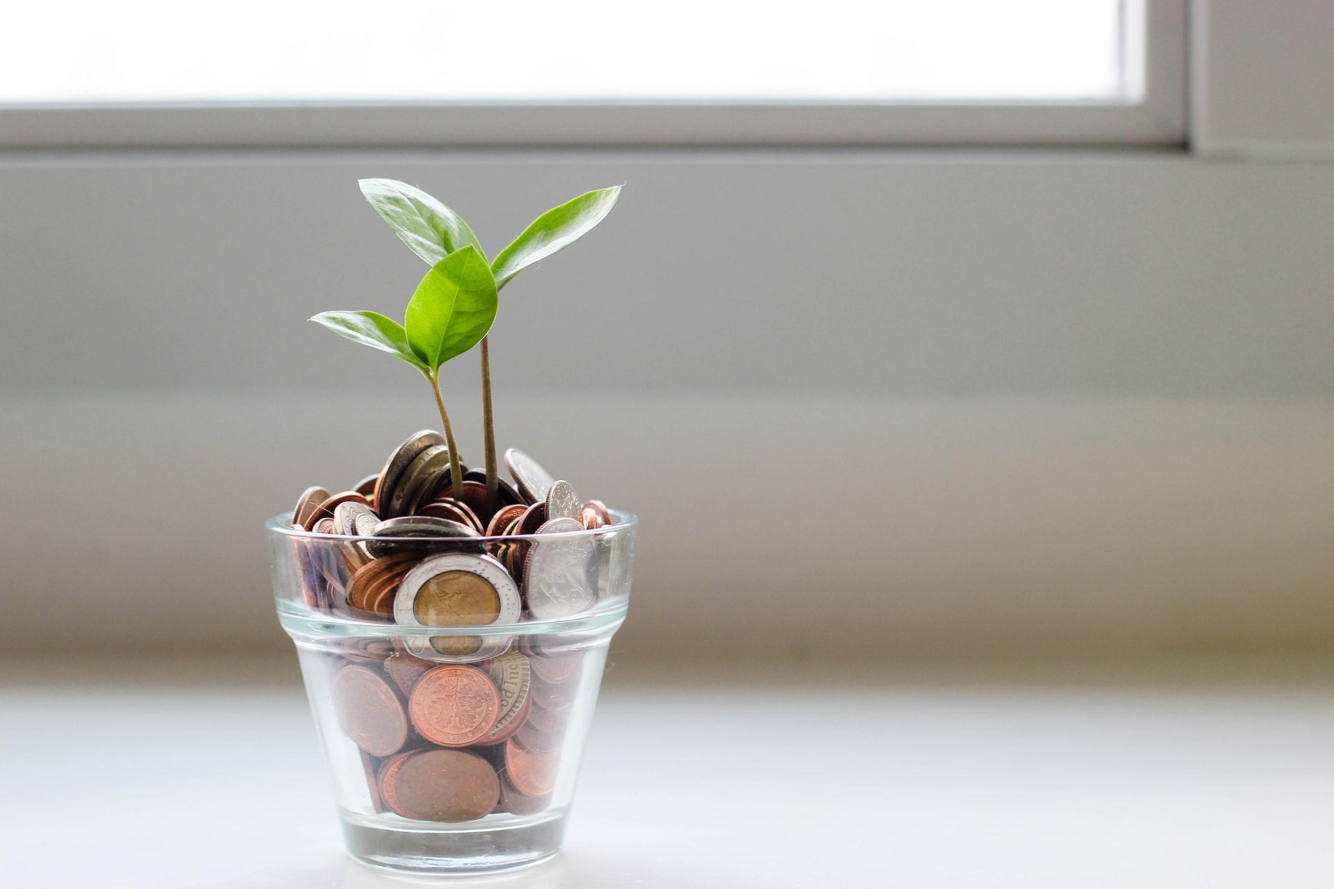 Fotografia di un vasetto di monete da cui cresce una piantina