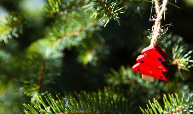 Fotografia del dettaglio di un albero di Natale