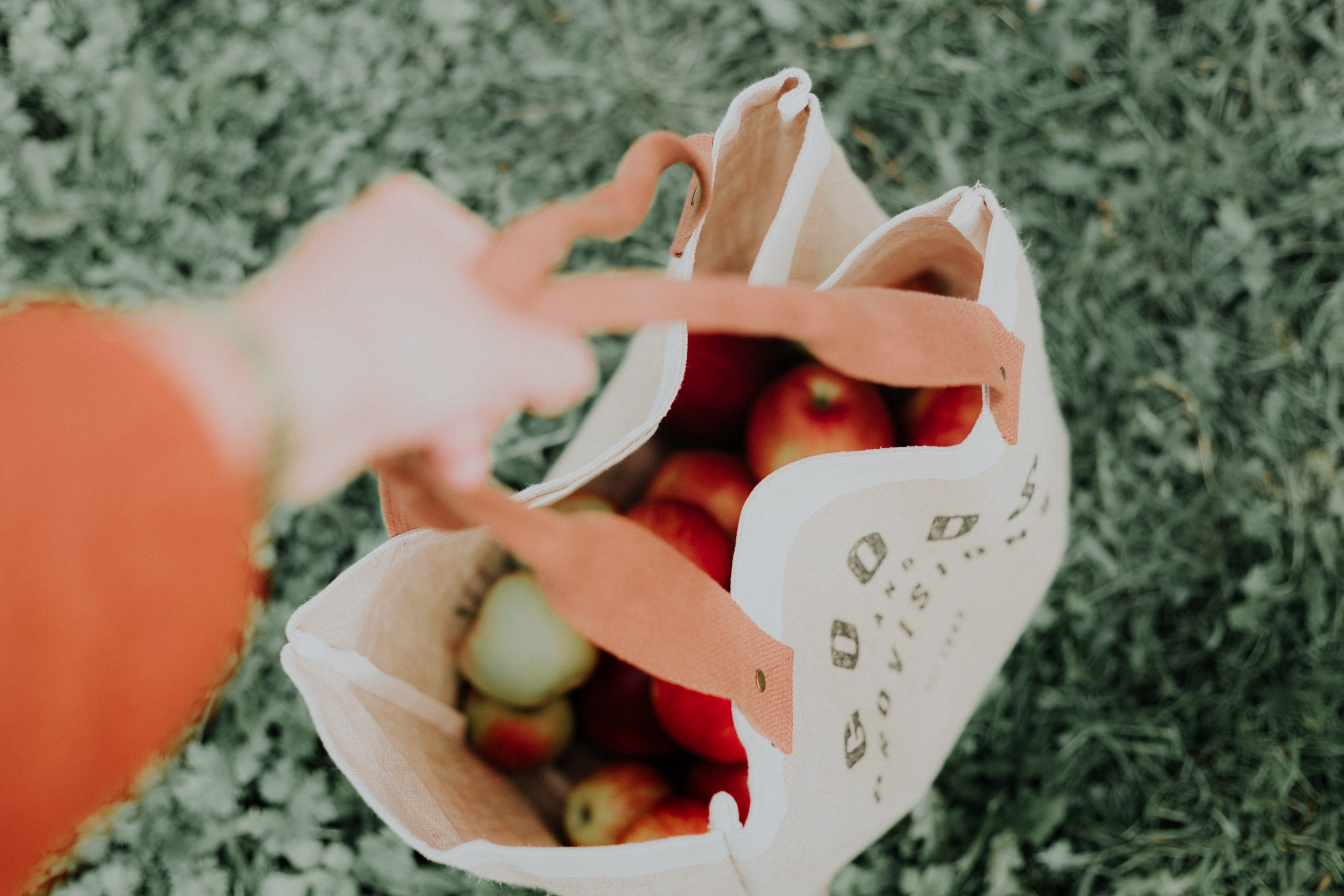 Photograph of a shopping bag full of apples