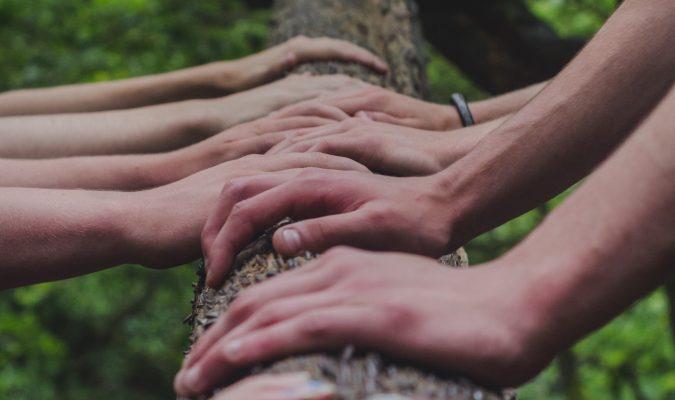 Fotografia di molte mani appoggiare al tronco di un albero
