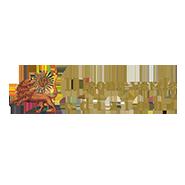 Logo di Il leone verde